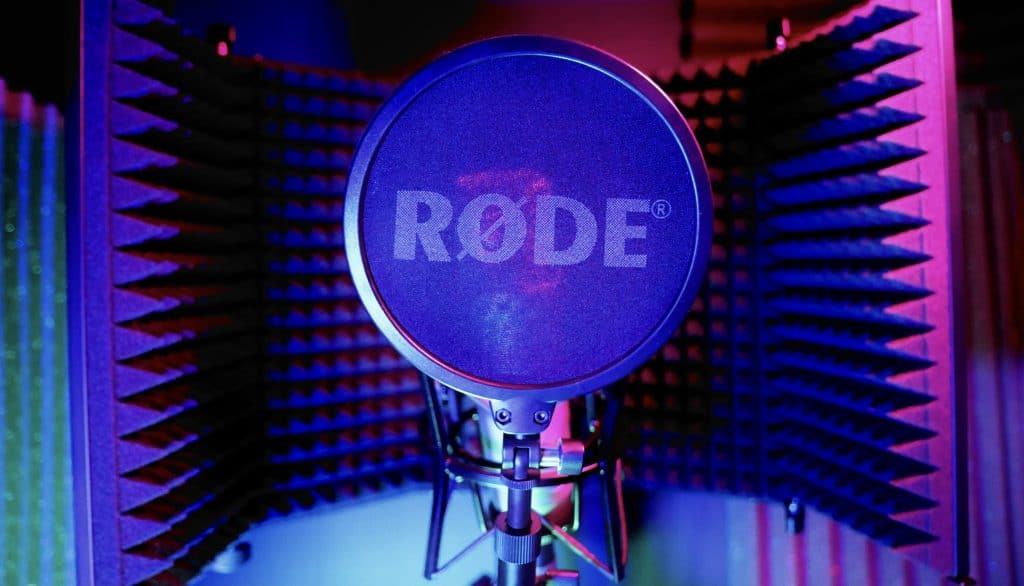 A pop filter on a professional microphone.